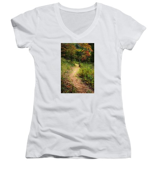 Path In The Prairie Women's V-Neck T-Shirt (Junior Cut) by Diana Boyd