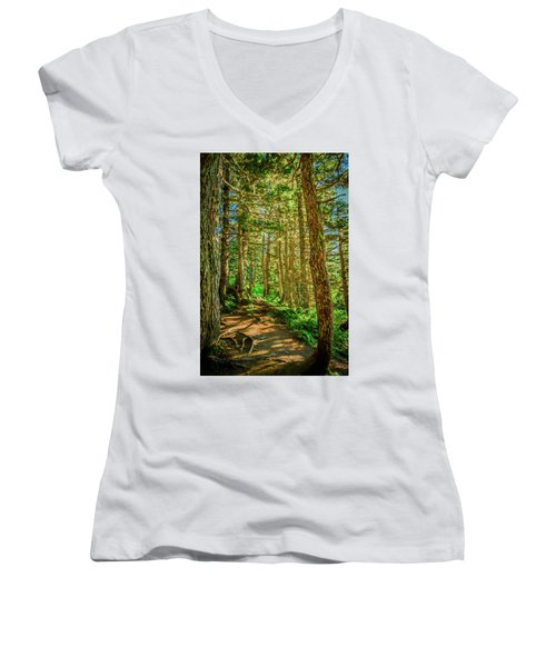 Path In The Trees Women's V-Neck