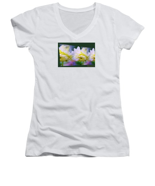 Pattern 313 _ Side Reflect Women's V-Neck T-Shirt