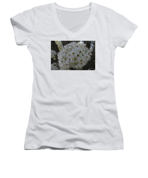 Pear Blossoms Women's V-Neck (Athletic Fit)