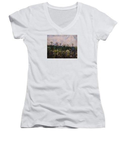 Pentimento Women's V-Neck T-Shirt