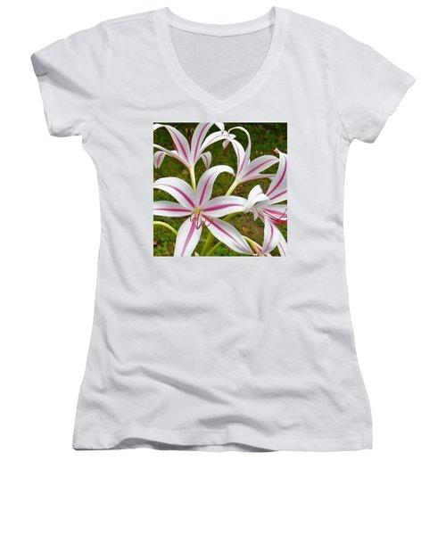Peppermint Lilies Women's V-Neck