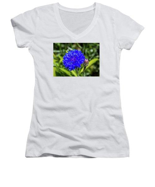 Perky Cornflower Women's V-Neck T-Shirt