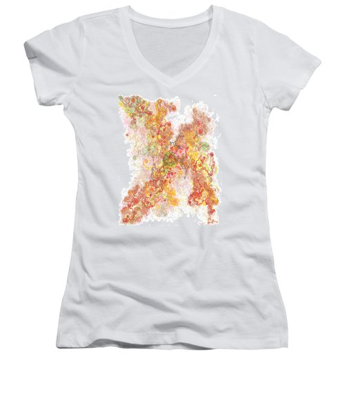 Phase Transition Women's V-Neck T-Shirt (Junior Cut) by Regina Valluzzi
