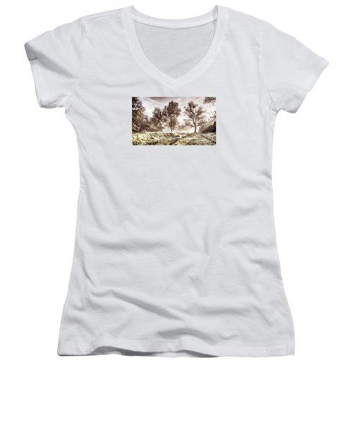 Pictorial Autumn Landscape Artistic Picture Women's V-Neck T-Shirt (Junior Cut) by Odon Czintos