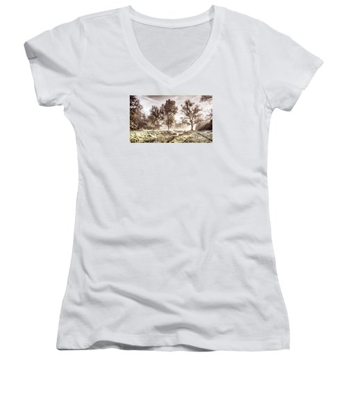 Pictorial Autumn Landscape Artistic Picture Women's V-Neck (Athletic Fit)