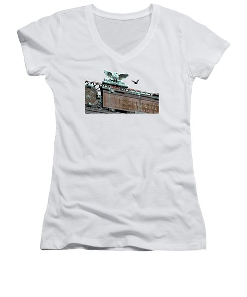Pidgeon Intrusion Women's V-Neck T-Shirt