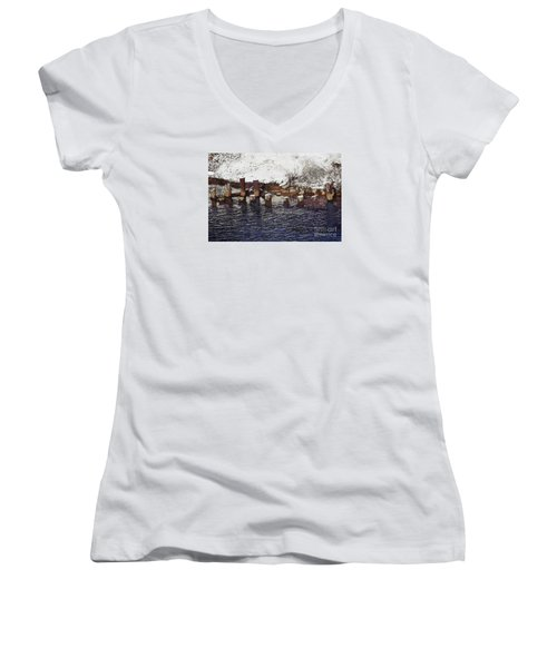 Pier Piles Women's V-Neck T-Shirt (Junior Cut) by David Blank