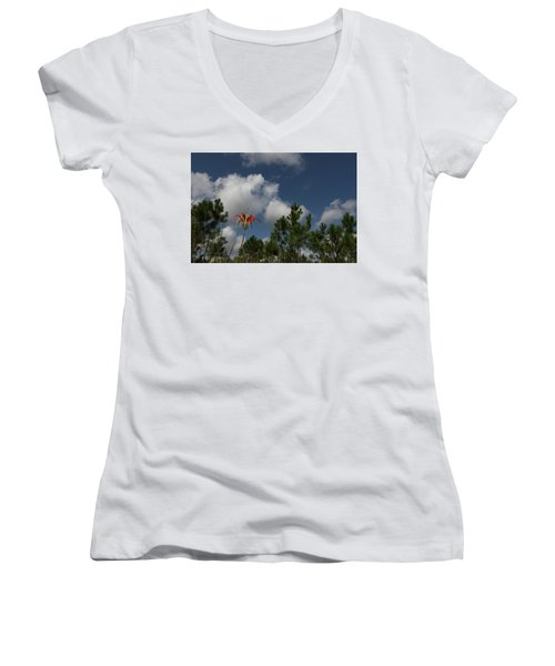 Pine Lily And Pines Women's V-Neck