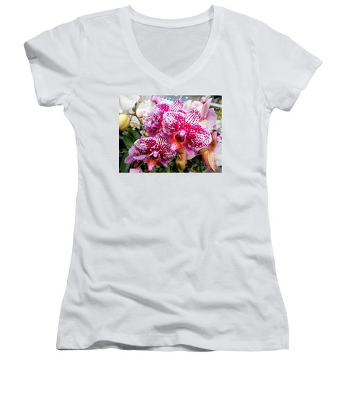 Pink Moth Orchids Women's V-Neck T-Shirt