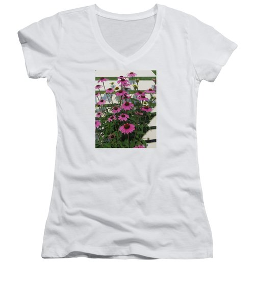 Pink On The Fence Women's V-Neck (Athletic Fit)