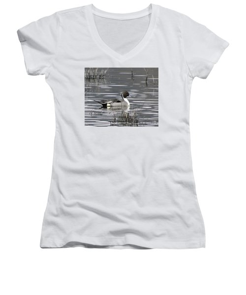 Pintail Duck Women's V-Neck (Athletic Fit)