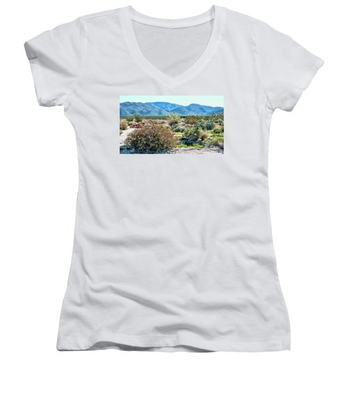Pinyon Mtns Desert View Women's V-Neck (Athletic Fit)