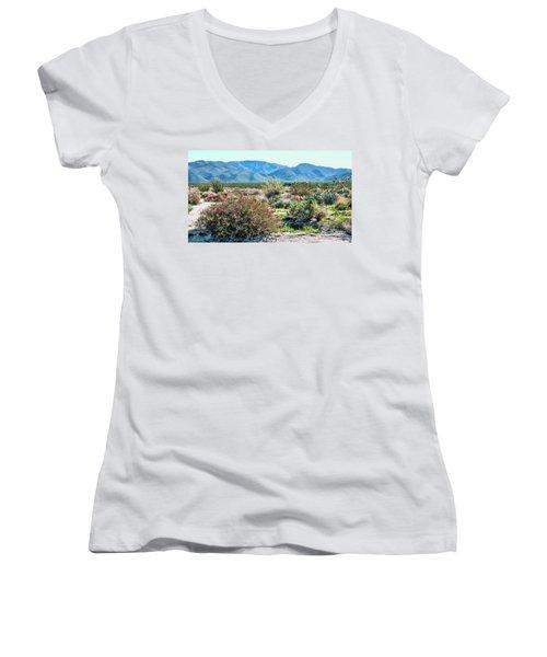 Pinyon Mtns Desert View Women's V-Neck T-Shirt (Junior Cut)