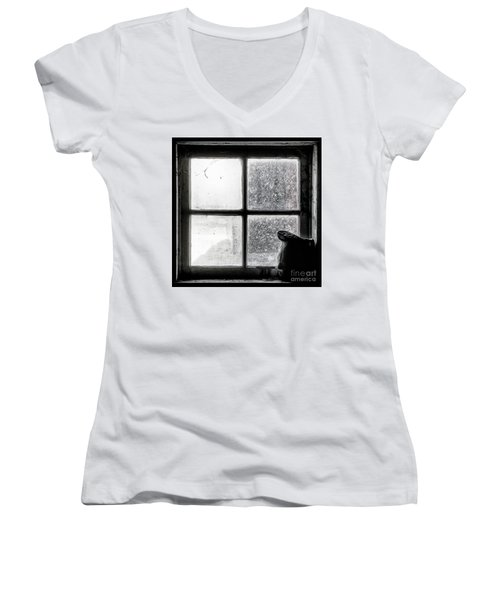 Pitcher In The Window Women's V-Neck