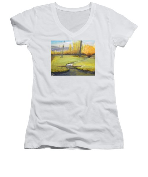 Placid Stream In Field Women's V-Neck T-Shirt (Junior Cut) by Sherril Porter