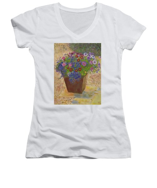 Women's V-Neck T-Shirt (Junior Cut) featuring the painting Pleasure Pot by Richard James Digance