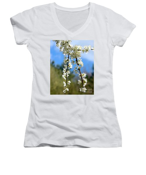 Plum Tree Blossoms Women's V-Neck T-Shirt (Junior Cut) by Stephen Melia