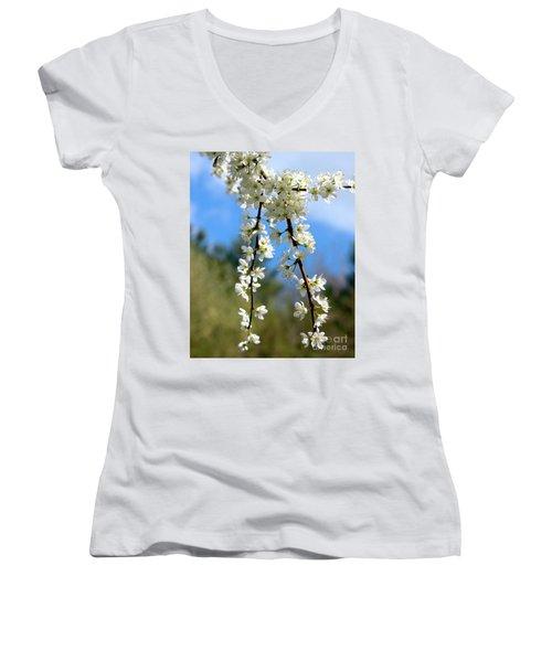 Plum Tree Blossoms Women's V-Neck T-Shirt (Junior Cut)