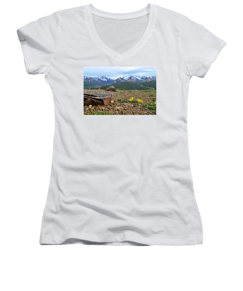 Women's V-Neck T-Shirt (Junior Cut) featuring the photograph Polychrome Pass, Denali by Zawhaus Photography