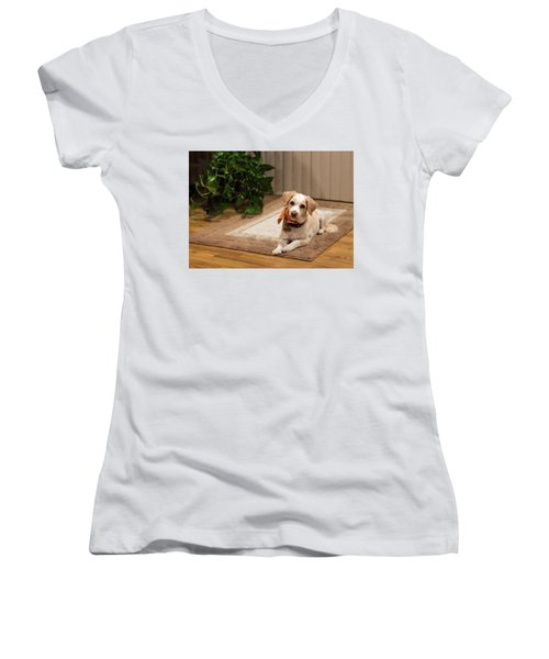 Portrait Of A Dog Women's V-Neck (Athletic Fit)