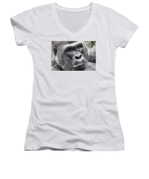 Portrait Of A Gorilla Women's V-Neck T-Shirt