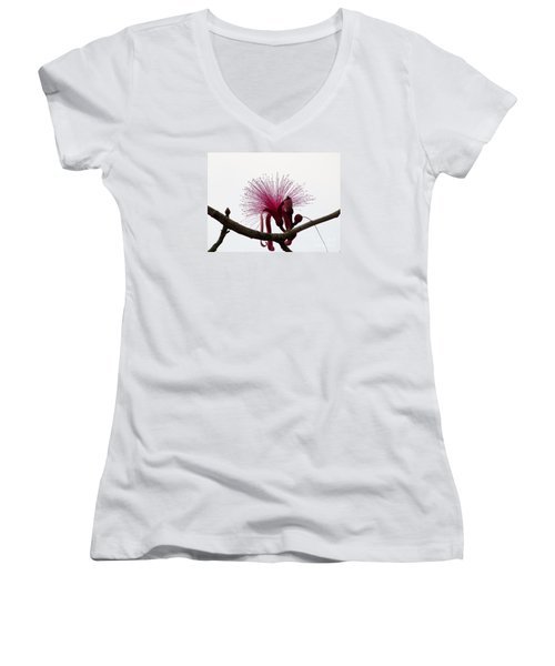 Powder Puff Women's V-Neck (Athletic Fit)