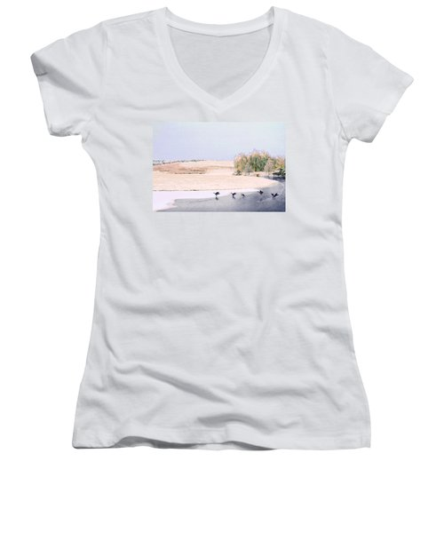Powell Gardens In Winter Women's V-Neck (Athletic Fit)