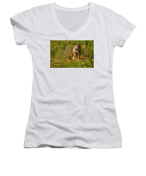 Prairie Dog In Flowers Women's V-Neck T-Shirt