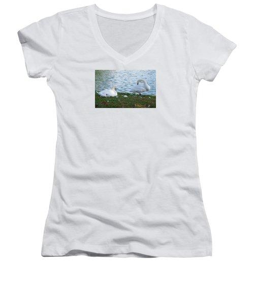 Preening Swans Women's V-Neck T-Shirt