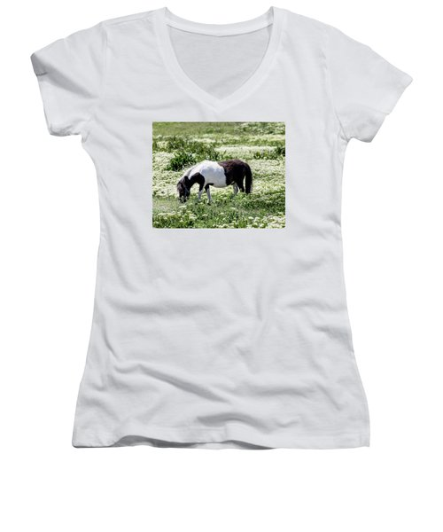 Pretty Painted Pony Women's V-Neck T-Shirt (Junior Cut) by James BO Insogna