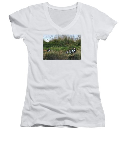 Puffins - Iceland Women's V-Neck (Athletic Fit)