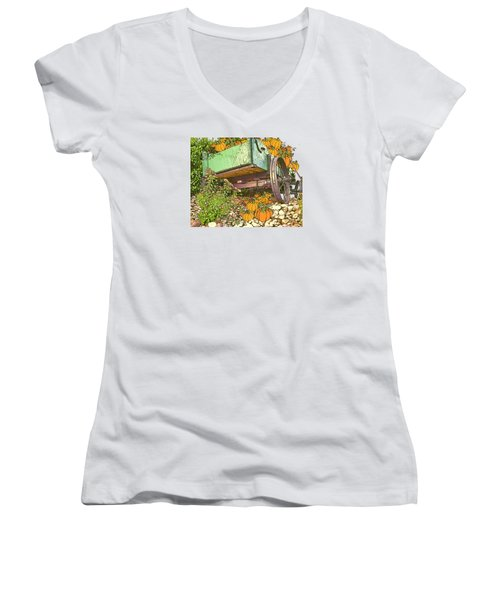Pumpkin Harvest Women's V-Neck T-Shirt (Junior Cut) by Larry Bishop