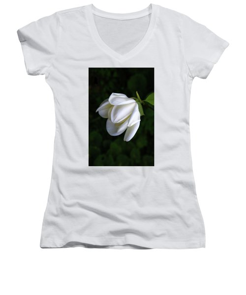 Purity In White Women's V-Neck (Athletic Fit)