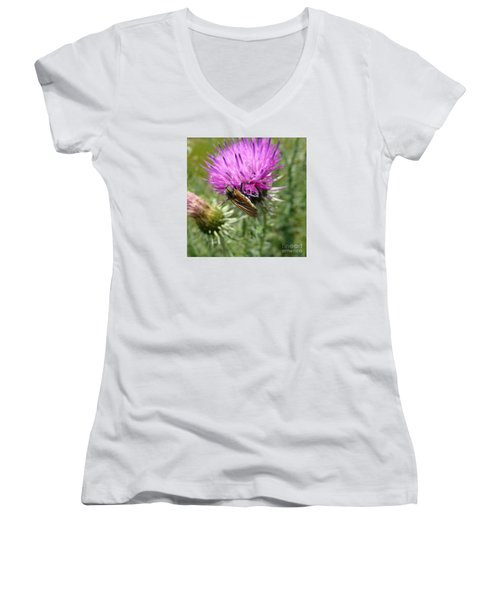 Purple Dandelions 1 Women's V-Neck