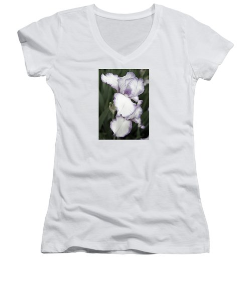 Purple Is Passion Women's V-Neck T-Shirt