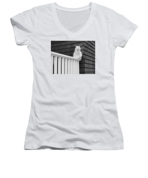 Pussy Cat Women's V-Neck (Athletic Fit)