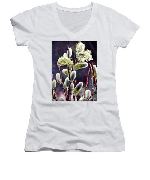 Pussy Willow Spring  Women's V-Neck T-Shirt