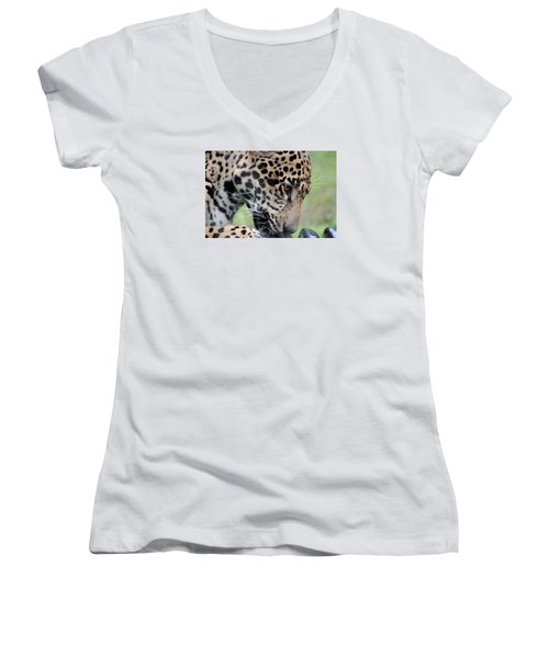 Jaguar And Toy Women's V-Neck (Athletic Fit)