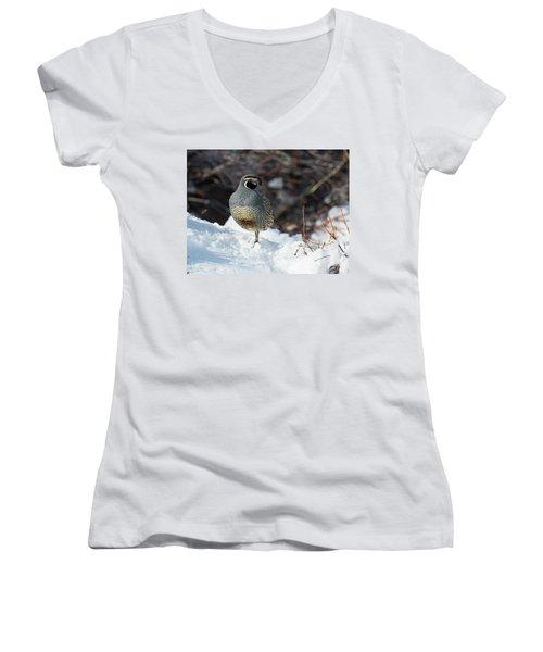Quail Hollow Women's V-Neck T-Shirt