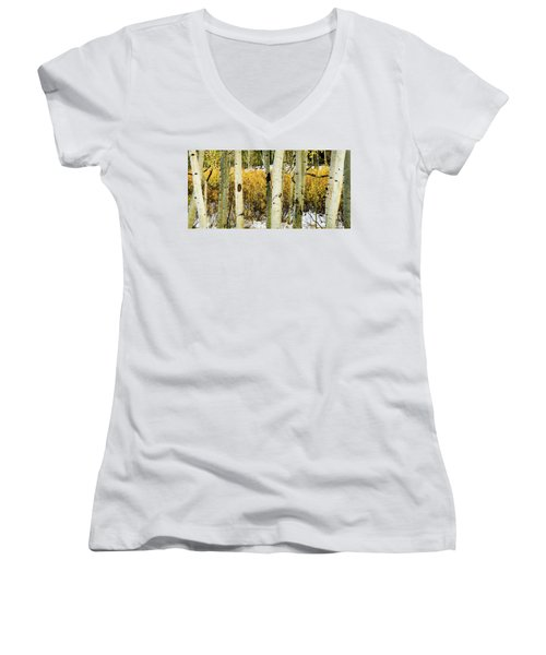 Quakies And Willows In Autumn Women's V-Neck T-Shirt