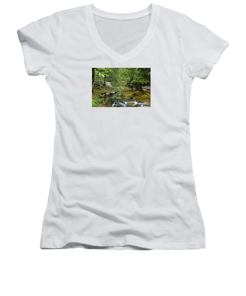 Quiet Place Women's V-Neck T-Shirt (Junior Cut) by Alana Ranney
