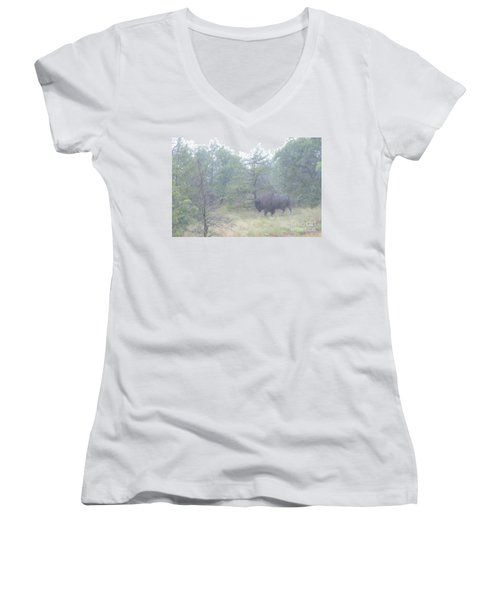 Rainy Day For The Bison Women's V-Neck T-Shirt