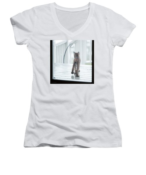 Shake It Off Women's V-Neck T-Shirt