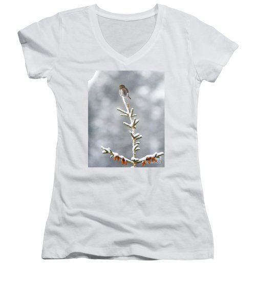Reaching For The Heavens Women's V-Neck (Athletic Fit)