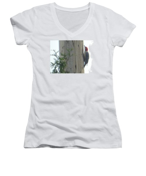 Red Bellied Woodpecker Women's V-Neck