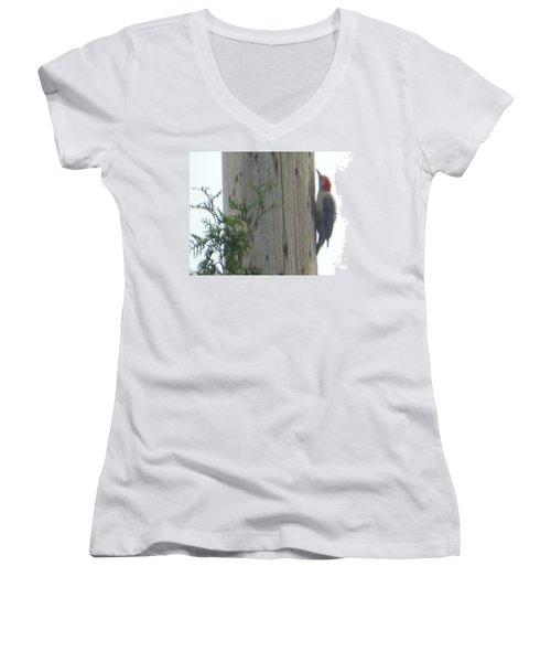 Red Bellied Woodpecker Women's V-Neck