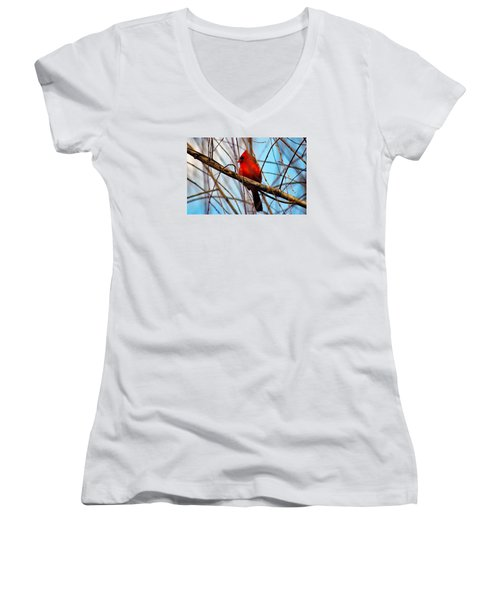 Red Bird Sitting Patiently Women's V-Neck (Athletic Fit)