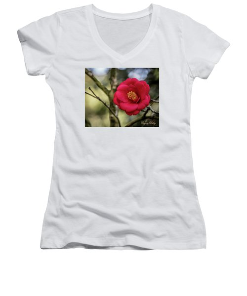 Red Camelia 05 Women's V-Neck T-Shirt