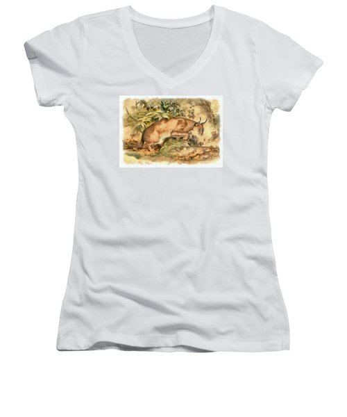 Red Caracal Women's V-Neck (Athletic Fit)